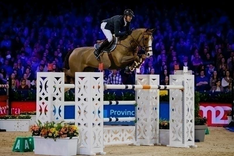Citaten Zoon Hongkong : Kwpn royal dutch sport horse nieuws